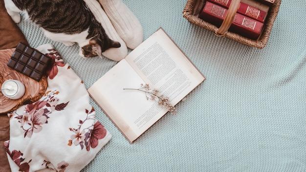 Gato y pies cerca de libros y bocadillos