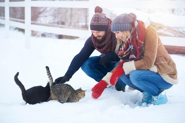 Los gatos necesitan un poco de calentamiento en invierno.