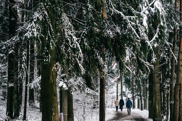 Gente caminando en el parque cubierto de nieve en frío día de invierno.