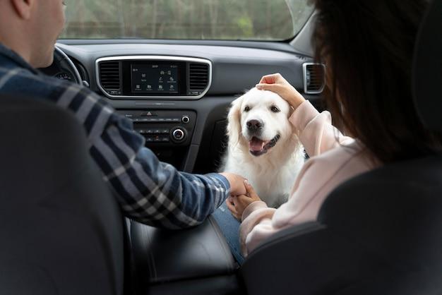 Gente de cerca con lindo perro en coche