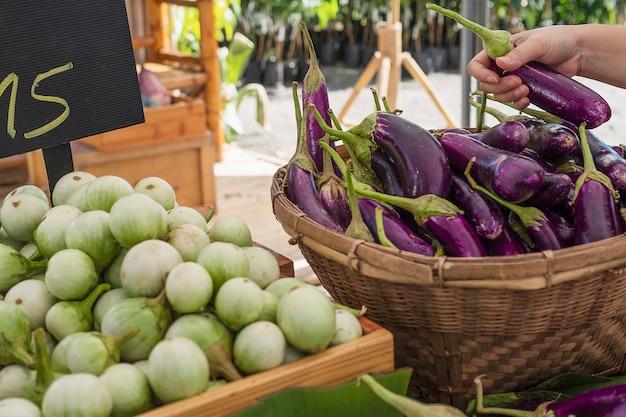 La gente compra berenjenas frescas en el mercado local - cliente en concepto de mercado de verduras
