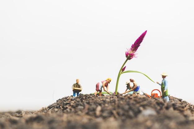 Gente en miniatura, jardineros cuidan las plantas que crecen en el campo.