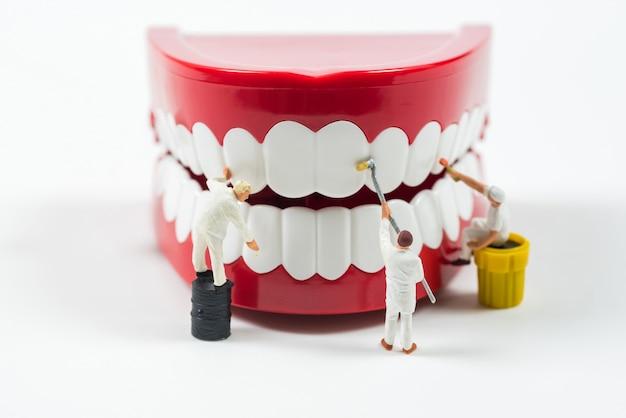 Gente de trabajadores en miniatura están limpiando el modelo de dientes
