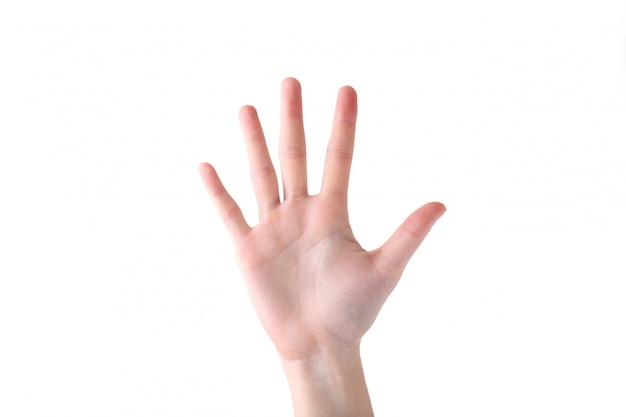 Gesto con la mano femenina aislado sobre un fondo blanco.