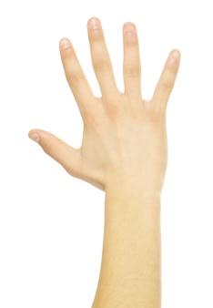 Gestos con las manos aislados en un blanco