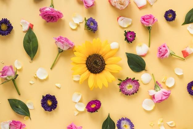 Girasol rodeado de diferentes tipos de flores sobre fondo amarillo