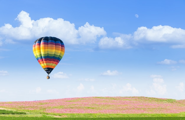 Globo de aire caliente sobre campos de cosmos rosa con cielo azul