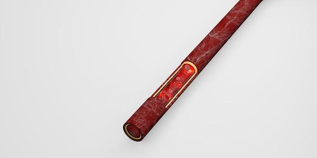Los glóbulos rojos capa de piel venas ilustración 3d cirugía intravascular