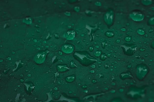 Las gotas de agua muestran amor a la tierra amor al medio ambiente.