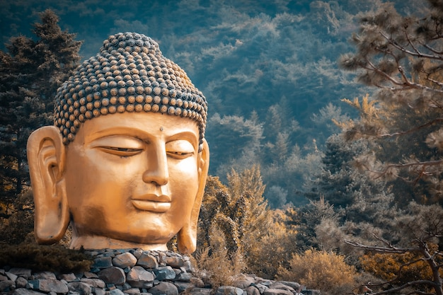 La gran cabeza de la estatua de buda en el templo waujeongsa de corea del sur