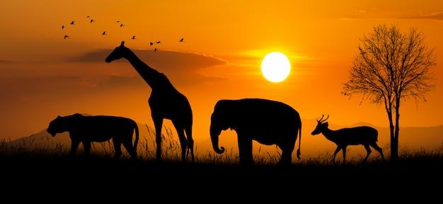Gran grupo de animales de safari africano. concepto de conservación de la vida silvestre