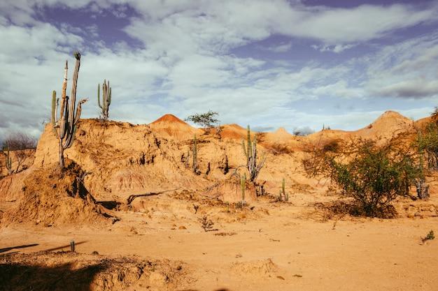 Gran montaña rocosa en el desierto