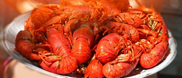 Gran plato de sabrosos cangrejos hervidos closeup, mariscos