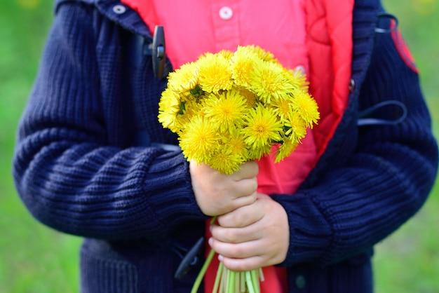 Un gran ramo de dientes de león amarillos en manos de niños.
