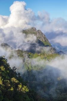 Gran vista de la niebla en doi luang chiang dao