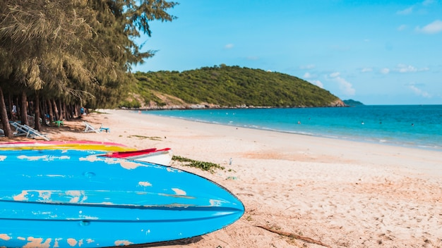 Grandes barcos coloridos en la orilla del mar de arena