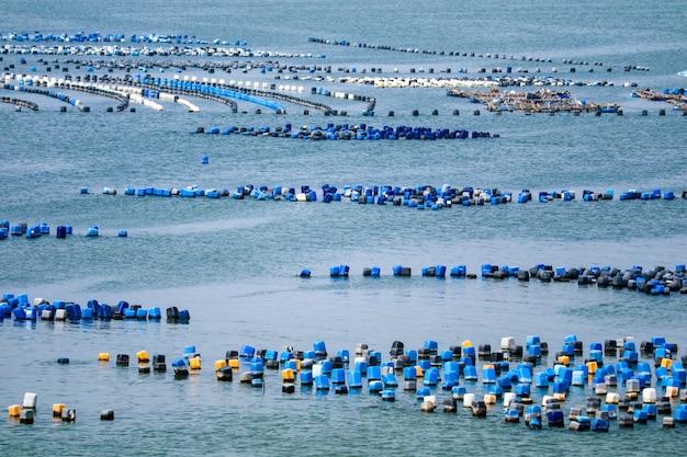 La granja de ostras está hecha de un cubo de plástico con la cuerda debajo del mar.