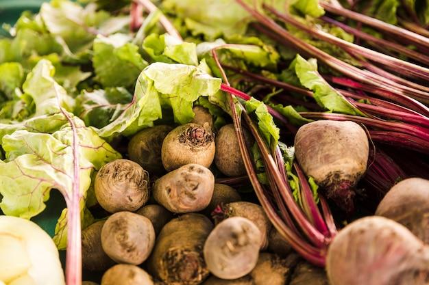Granja de remolacha fresca con hojas a la venta en el mercado.