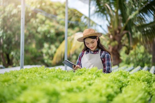 Granja de vegetales hidropónicos. granjero asiático hermoso que estudia el cultivo y el análisis de hortalizas hidropónicas. concepto de cultivo de vegetales orgánicos y alimentos saludables.