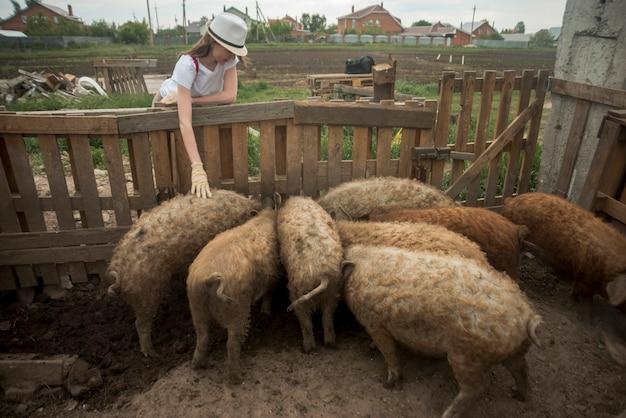 Granjera cuidando cerdos en una pocilga