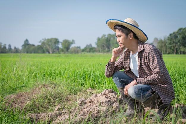 Granjero asiático hombre sentado y pensando en el problema de la granja en el campo de arroz
