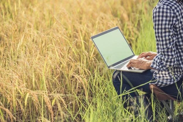 Granjero en el campo de arroz con ordenador portátil