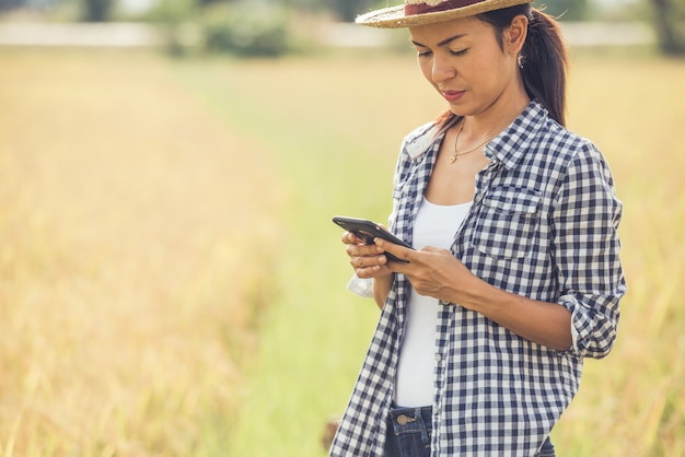 Granjero en campo de arroz con smartphone