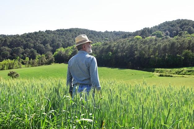 Granjero en un campo de trigo