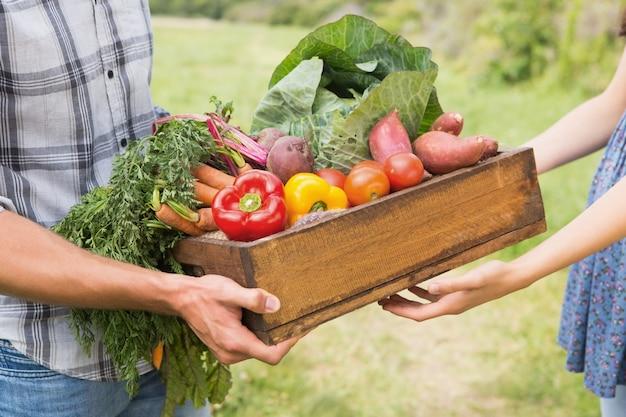 Granjero dando caja de verduras al cliente