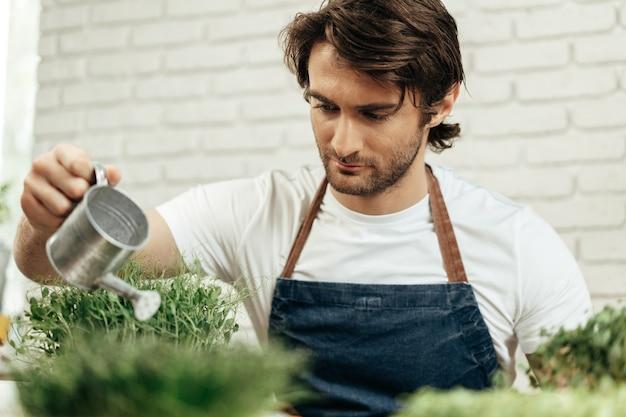 Granjero de hombre barbudo atractivo cuidando brotes de microgreens