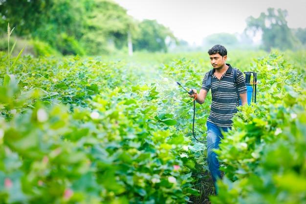 Granjero indio rociar pesticidas en el campo de algodón