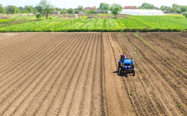 Granjero en un tractor conduce en un campo agrícola. agricultura y agroindustria.
