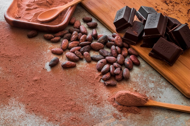 Granos de cacao crudo y polvo con cubos de chocolate