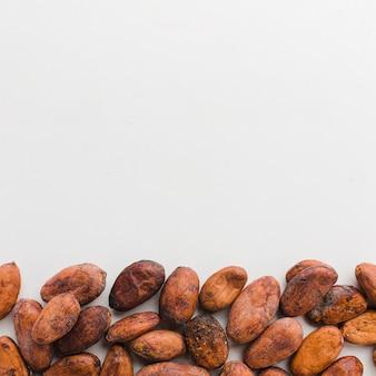 Granos de cacao con espacio de copia
