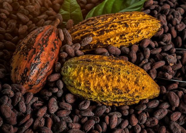 Granos de cacao y frutos de cacao en madera