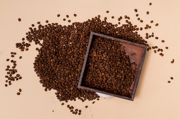 Granos de café y una bandeja