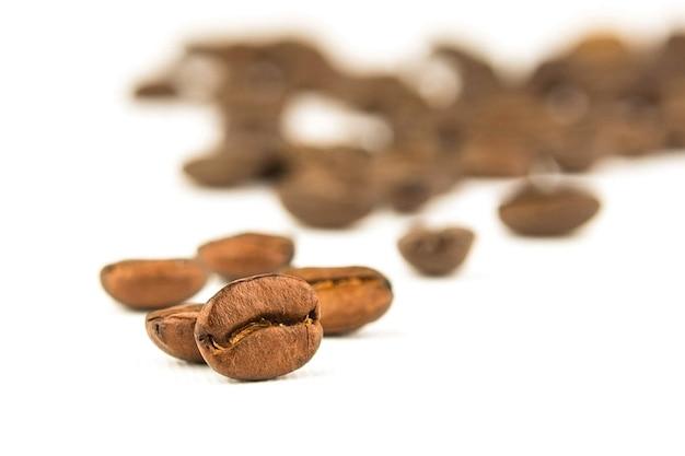 Granos de café en blanco