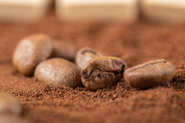 Granos de café sobre café mezclado o cacao en polvo.