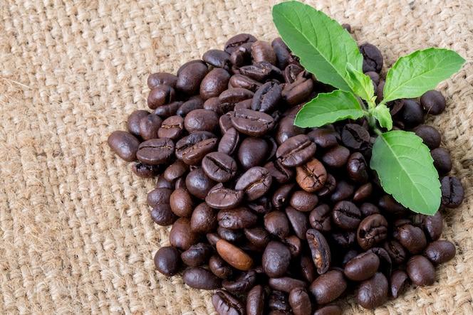 Granos de café en el fondo de saco