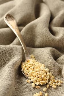 Granos de trigo en cuchara de metal sobre fondo de tela de saco