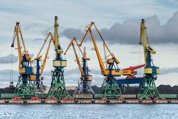 Grifos a lo largo de la costa del puerto