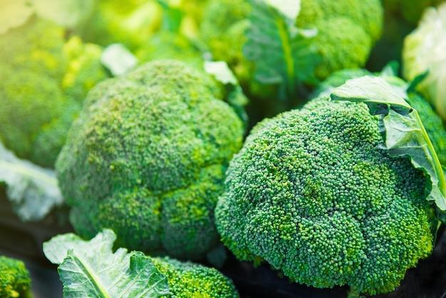 Grupo de cabezas de brócoli en bandejas en supermercado