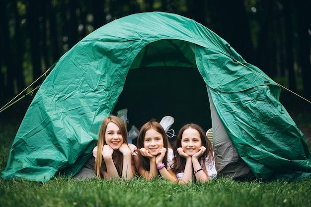 Grupo de chicas acampando en el bosque