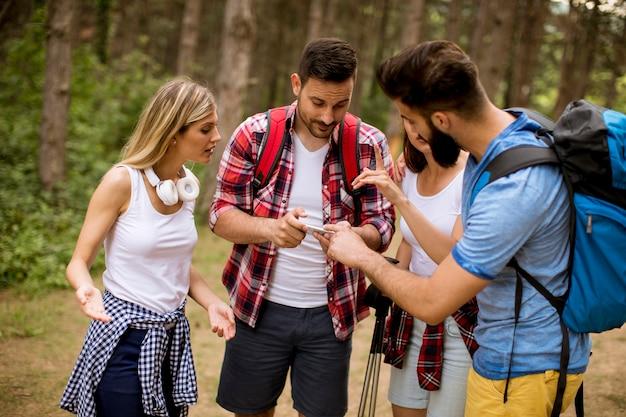 Grupo de cuatro amigos caminando juntos por un bosque