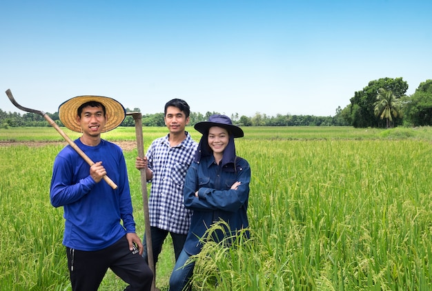 Grupo de feliz agricultor asiático dos hombres y una mujer sonríen y sosteniendo herramientas en el campo de arroz verde