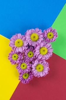 Grupo de flores rosadas sobre colorido