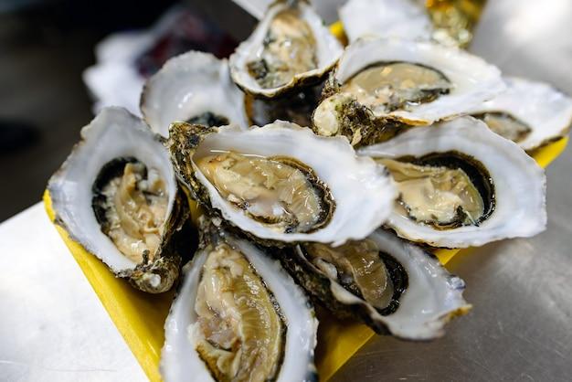Grupo de ostras frescas