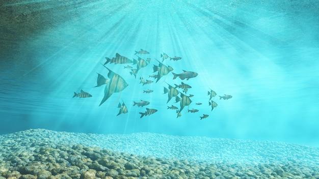Grupo de peces