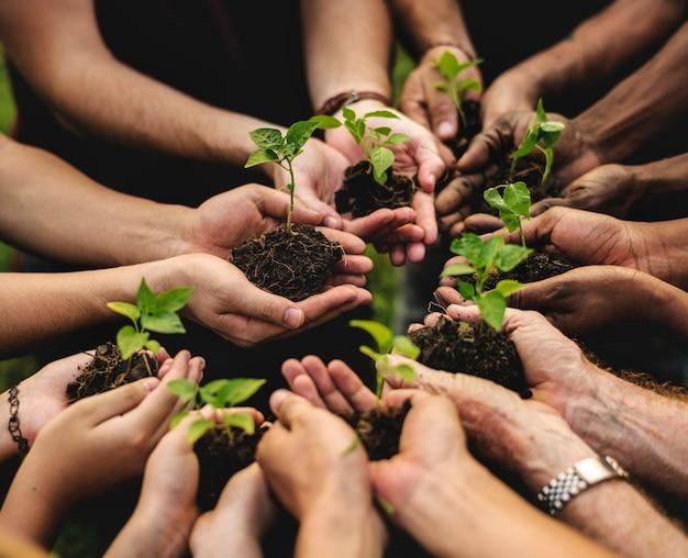 Grupo de personas de conservación del medio ambiente manos plantando en vista aérea