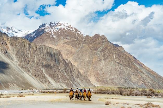 Un grupo de personas disfruta montando un camello caminando sobre una duna de arena en hunder, hunder es una aldea en el distrito de leh de jammu y cachemira, india.